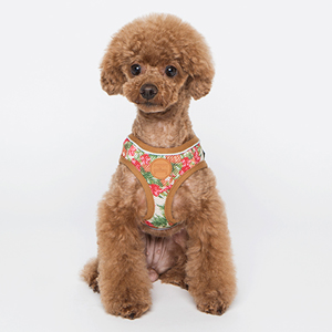 Tropical Harness